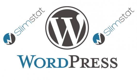 wordpress-slimstat-566x333